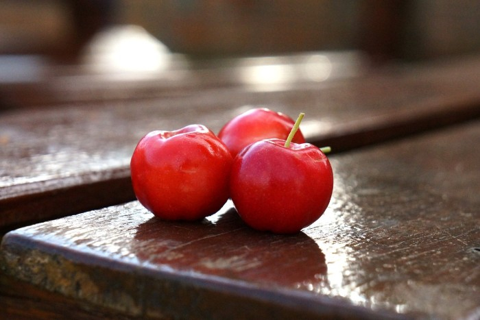 Acerola - přírodní zdroj vitamínu C