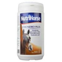 CANVIT Nutri Horse Chondro Plus prášek 1 kg