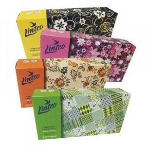 LINTEO Papírové kapesníky BOX 2-vrstvé 100 kusů