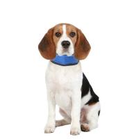 KARLIE FLAMINGO Chladící bandáž Fresk pro psy velikost S 15-30 cm