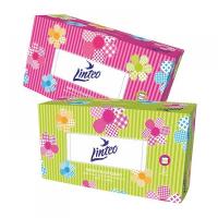 LINTEO Papírové kapesníky dvouvrstvé v boxu 200 kusů