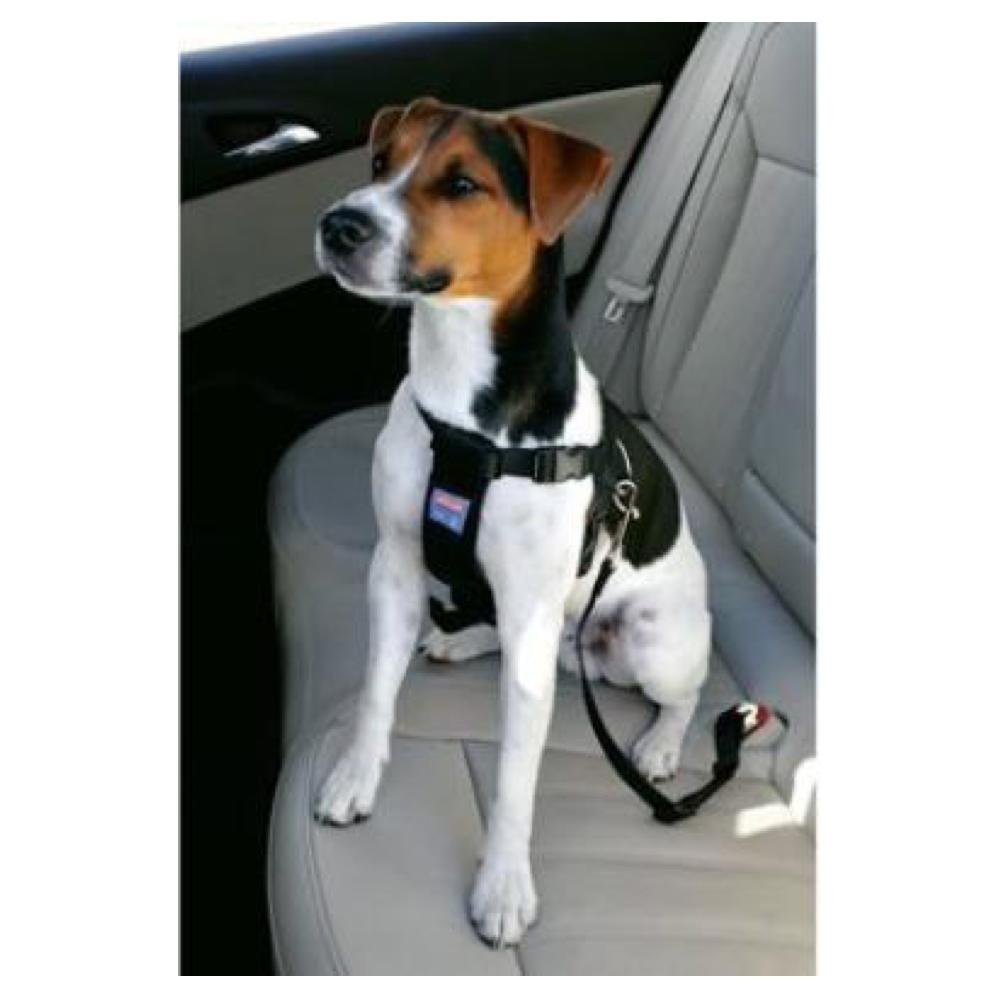 ZOLUX Bezpečnostní postroj do auta pro psa M