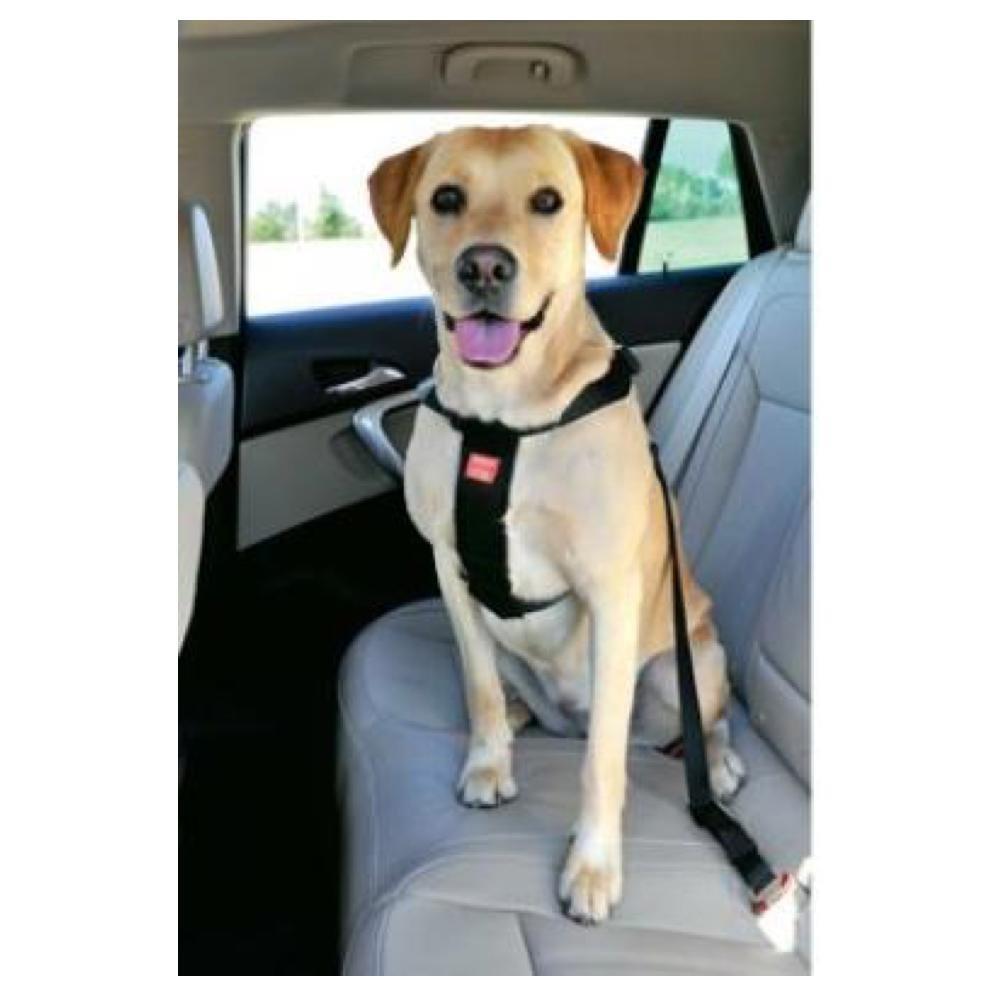 ZOLUX Bezpečnostní postroj do auta pro psa XL