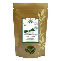 SALVIA PARADISE Mladý zelený ječmen 100% sušená šťáva BIO 250 g