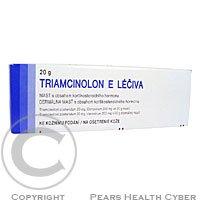 TRIAMCINOLON E LÉČIVA  1X20GM Mast