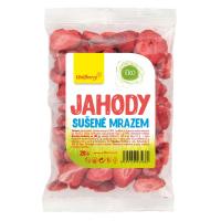 WOLFBERRY Jahody lyofilizované 20 g